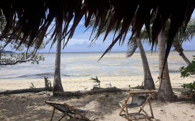 dos reposeras y dos palmeras sobre la arena, ye l mar al fondo. fiji