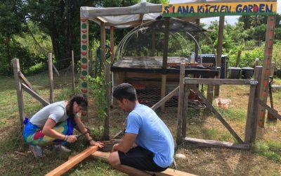 voluntarios construyendo con maderas
