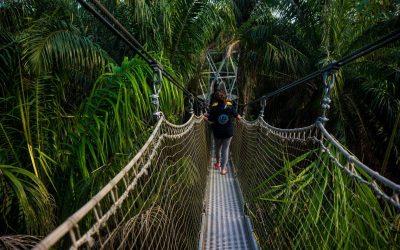 Jovenes explorando la naturaleza
