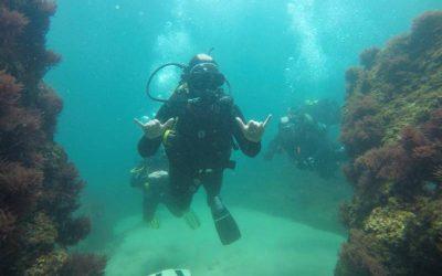 Programas de conservación marina